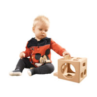 Hardwood Shape Sorting Cube